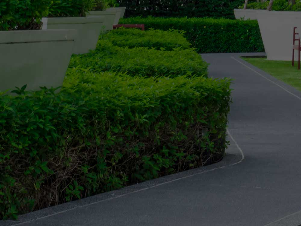 West Chester Commercial Landscaping